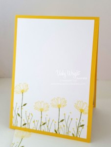 Daisy-Delight1---Inside