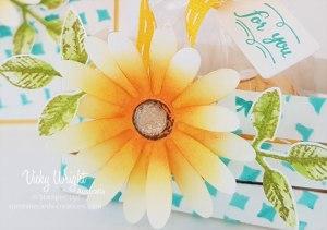 Delightful-Daisy---Flower