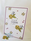 2018 Occasions Catalogue, Perennial Birthday, Brthdays, Female, Eclispe Technique, Vicky Wright, Stampin' Up!