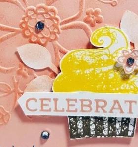 3 Hello Cupcake - Close Up