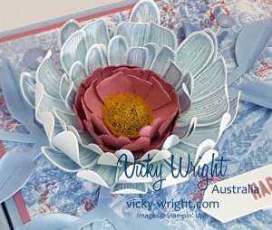Daisy-Lane-Box---Close-Up