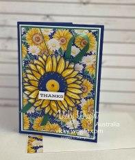 Celebrate-Sunflowers-6